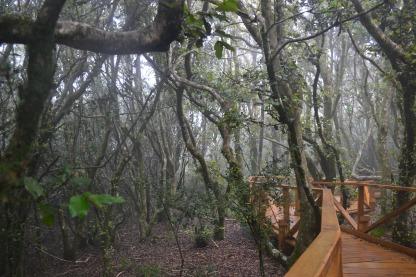 photo of FFray Jorgeray Jorge National Park